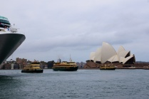 Ferries bij het Opera House